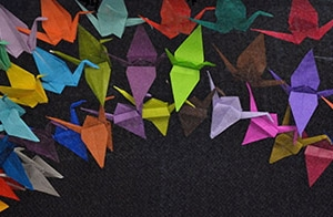 "Origami cranes created at the DFM's ""Soaring Toward Change"" event represent a shared commitment to addressing diversity, health equity and inclusion."