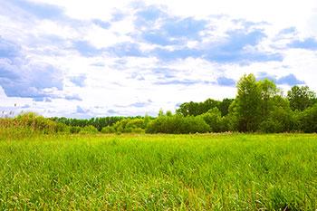 Prairie Memorial